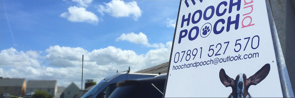 units-to-let-in-staustell